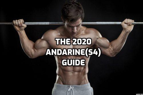 Andarine guide